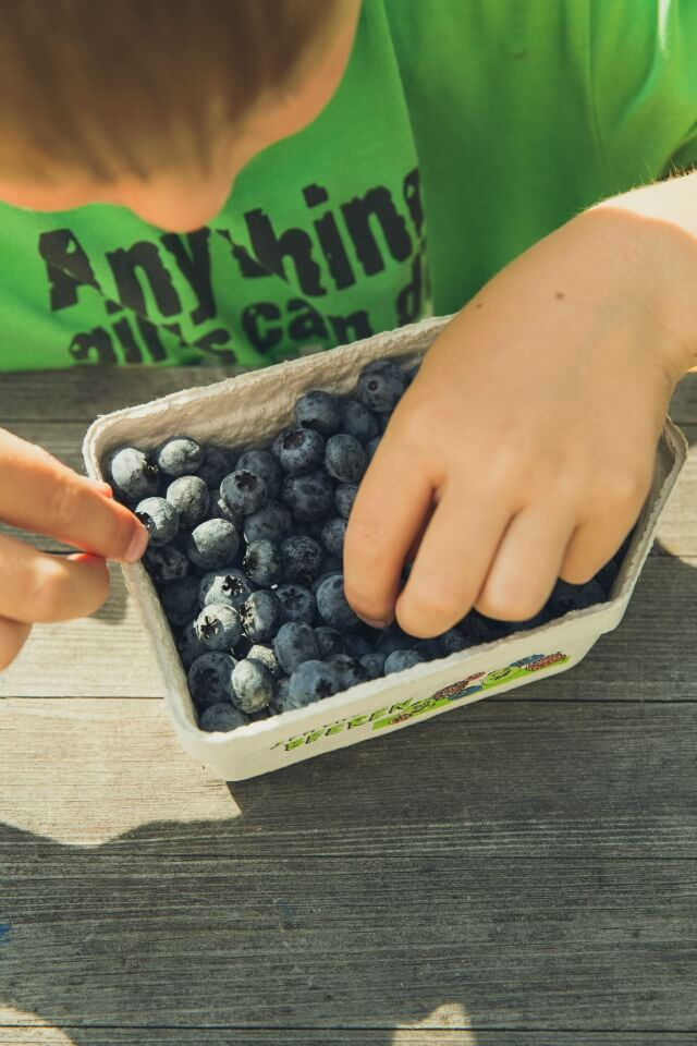Blueberries could be the secret to helping your child perform well in their exams!